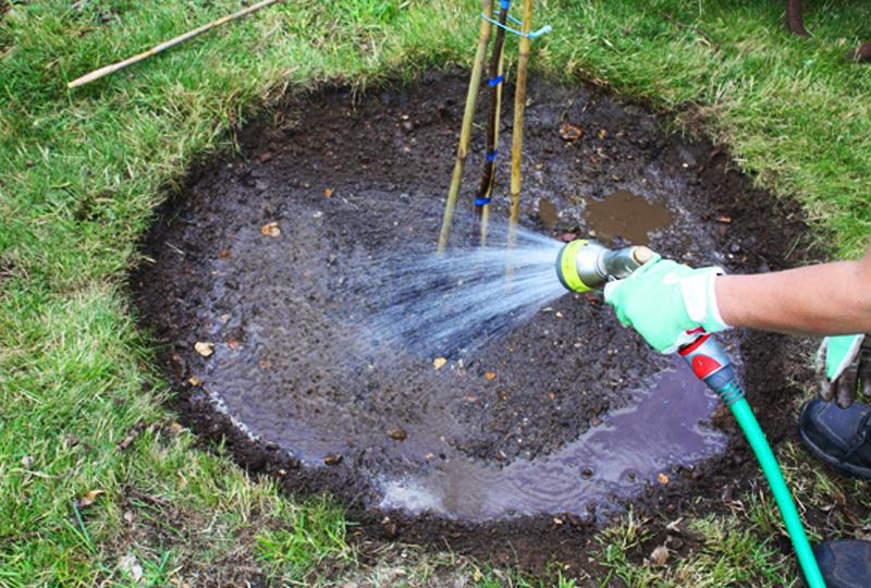 Правильный полив сада — экономим воду с мульчей «Черный кристалл»